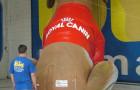Mascote Inflavel 3D Royal Canin - Foto 1