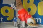 Mascote Inflavel 3D Royal Canin - Foto 2